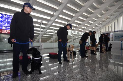 Các sĩ quan cùng chó nghiệp vụ làm nhiệm vụ tại sân bay quốc tế Đào Viên. Đài Loan bắt đầu kiểm tra gắt gao mọi hành khách từ Việt Nam để tìm các sản phẩm từ thịt lợn, sau khi một người đến từ TP HCM mang theo bánh mì thịt dương tính với virus tả lợn vào đầu tháng 2. Ảnh: Central News Agency.