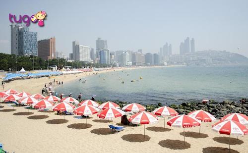 Bãi biển Haeundae  Busan cũng là một địa điểm được các nhà làm phim yêu thích trên màn ảnh Hàn Quốc