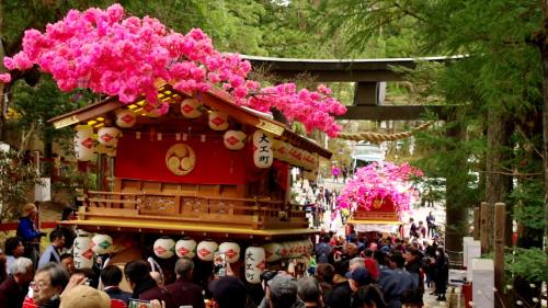 Hàng cây Sakura Nikko kaido Hàng cây Sakura Nikko kaido: Dọc quốc lộ 19, đoạn đường dài 16 km từ thành phố Utsunomiya đến thành phố Nikko (Yamaguchi) khiến du khách choáng ngợp với hàng cây anh đào dòng Yaezakura. Bạn có thể ngắm hoa và đi ôtô về hướng Kinugawa, một địa điểm du lịch nổi tiếng .