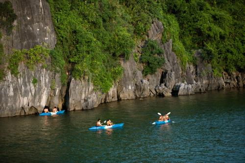 Đến Vịnh Hạ Long, dukhách có cơ hội trải nghiệm các hoạt động giải trí như chèo thuyền Kayak, tắm biển, đạp xe, học nấu ăn, bơi lội, câu mực ban đêm...