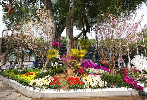29 - 31/3 tại Hà Nội:Lễ hội hoa mai anh đàoNăm 2019 là lần thứ 4 sự kiện được tổ chức tại thủ đô.Lễ hội năm nay có khoảng 100 cây và 20.000 cành hoa đào được vận chuyển bằng đường hàng không từ Nhật Bản.Ngoài ra, du khách có dịp thưởng thức nhiều món ăn Nhật Bản tại 20 gian hàng. Sự kiện còn giới thiệu một số nét văn hóa đặc sắc của Nhật Bản như trà đạo, cờ vây, cờ Shogi, trò chơi truyền thống Kendama...Địa chỉ:Vườn hoa Lý Thái Tổ, Cung Thiếu nhi và các con cố xung quanh. Ảnh minh hoạ: Ngọc Thành.