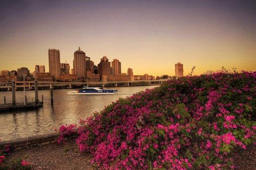 Một góc thành phố Brisbane vào chiều thu. Ảnh: Pinterest.