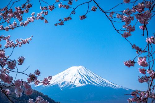 Núi Phú Sĩ và hoa anh đào là điểm thu hút khách du lịch đến Nhật Bản.