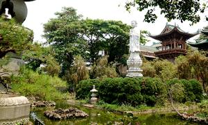Ngôi chùa có tượng Phật giữa hồ nước ở Gia Lai