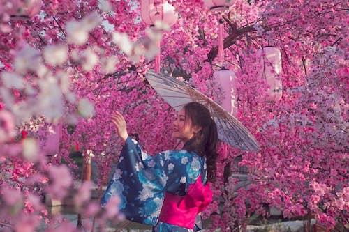 Gian hàng của Tugo lấy cảm hứng từ mùa hoa anh đào Nhật Bản.