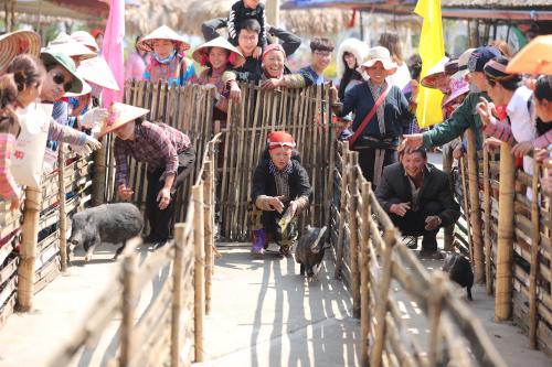 Khám phá văn hóa Tây Bắc tại chợ vùng cao ở khu vực ga đi cáp treo, du khách sẽ được thưởng thức những màn trình diễn nghệ thuật như múa khèn, thổi sáo, múa điệu xòe hoa... do chính bà con hoặc các nghệ nhân người dân tộc Tày, Xá Phó, Dao, Mông, Giáy... biểu diễn và hòa nhịp vào đời sống vùng cao đặc sắc.