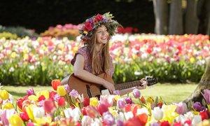 Vườn hoa tulip lớn nhất thế giới ở Hà Lan