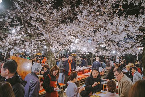 Nhật Bản mùa hoa anh đào và mùa hè thường rất đông khách. Ảnh: Nguyễn Thành Luân.