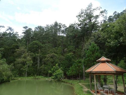 Một góc nhỏ Ma rừng lữ quán khi chưa qua chỉnh sửa. Ảnh:Hanoi Tourism.