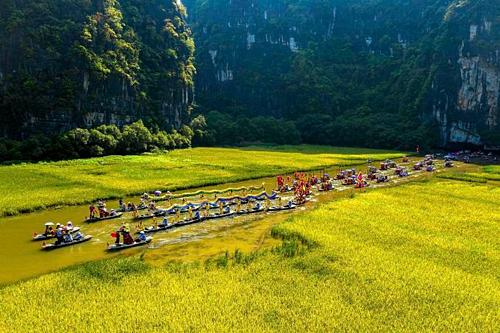 Mùa lúa chín tại Ninh Bình. Ảnh: Khánh Phan.