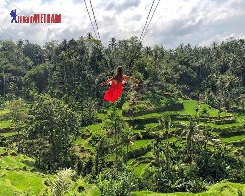 Tận hưởng thiên nhiên trong lành cùng Bali Swing.