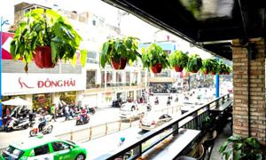 Quán cà phê không gian xanh giữa lòng Sài Gòn