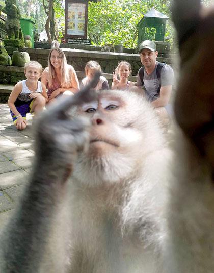 Khỉ giơ ngón tay thối khi du khách đang chụp ảnh ở Bali
