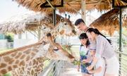 Tổ ấm của hơn 2.000 động vật hoang dã ở vườn thú lớn nhất Bắc Trung Bộ
