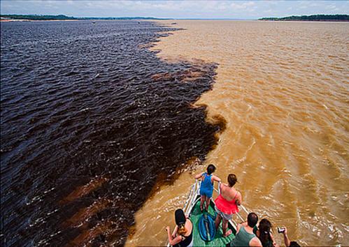 Tour du lịch đưa khách tham quan hợp lưu Encontro das Águas. Ảnh: Tours in Manaus.