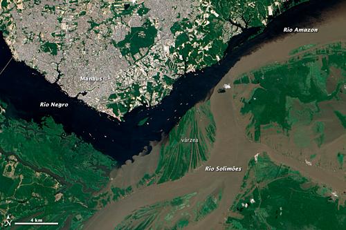 Dòng nước lạnh hơn, đặc hơn và chảy nhanh hơn của Rio Solimões và vùng nước ấm hơn, chậm hơn của dòng Rio Negro tạo thành một ranh giới có thể nhìn thấy rõ ràng từ vệ tinh. Ảnh:Google Earth.