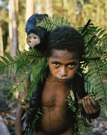 Lợn được xem là tiền tệ ở bộ lạc Kombai. Khi người phụ nữ không may mất đi, gia đình của họ có thể bắt đền bằng lợn. Ảnh: Frederic Lagrange.