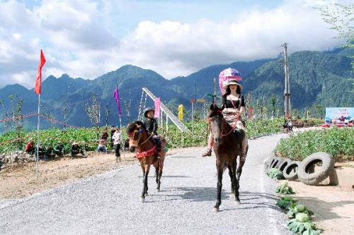 Những khoảnh khắc thú vị trong giải đua ngựa ở Fansipan - 6