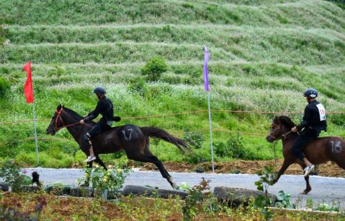 Những khoảnh khắc tranh tài quyết liệt tại giải đua ngựa Fansipan lần thứ nhất (chị Thư edit giúp em ạ) - 7