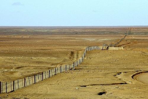 Hàng rào được xây dựng để ngăn loài chó Dingo. Ảnh: Dingo Fence.
