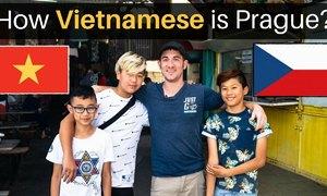 Phượt thủ bất ngờ khi thấy Việt Nam thu nhỏ giữa lòng Czech