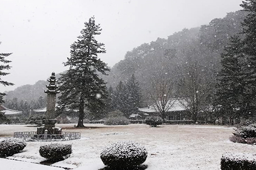 Cảnh tuyết rơi đầu mùa tại một ngôi đền ở phía bắc Triều Tiên. Ảnh: Minh Vũ.
