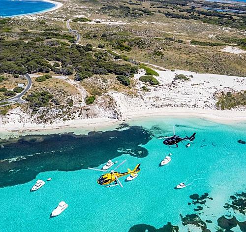Đảo Rottnest, địa điểm lặn sở hữu làn nước trong xanh cùng các rạn đá vôi với hơn 4.000 loài cá khác nhau cùng với các loài chim di cư thường đổ về đảo kiếm ăn trong suốt cả năm. Ảnh: Destination Perth.
