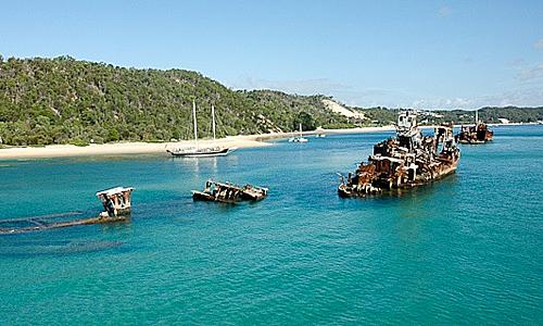 15 xác tàu bị đánh chìm vào năm 1963 ngoài khơi bờ biển đảo Moreton, gần khu nghỉ mát Tangalooma đã hình thành nên một rạn san hô nhân tạo đầy cá, rùa xanh, cá đuối và cá mập Wobbegong nhỏ. Lặn biển tại Tangalooma là nơi thích hợp nhất cho những người lần đầu trải nghiệm hoạt động lặn biển. Ảnh: Pinterest.