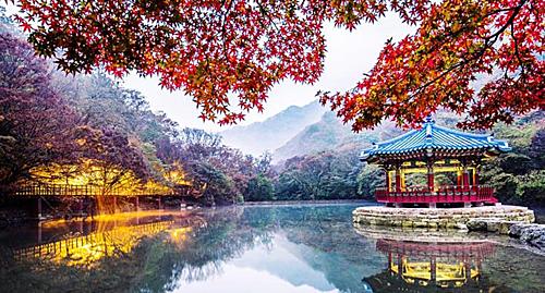 Naejangsan cũng là tên của một ngọn núi tại công viên và cũng là ngọn núi có sắc thu đẹp nhất Hàn Quốc. Đến đây ngoài việc chiêm ngưỡng lá đỏ bạn có thể ghé vào đền Baeyangsa hay đài vọng cảnh tại công viên vốn là một trong những điểm lý tưởng để ngắm cảnh thu tại đây.