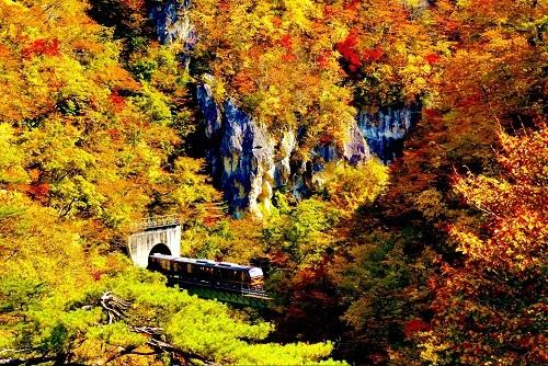 Resort Minori (tuyếnSendai -Shinjo) không đặc biệt ở thiết kế haynội thất mà gây ấn tượng mạnh với du khách bởihành trình đi qua những khung cảnh thiên nhiên tuyệt đẹp. Thời gian lý tưởng để trải nghiệm chuyến tàu là vào mùa thu, du khách có thểngắm nhìn lá đỏ,lá cam rực rỡ khi tàu đi qua hẻm núi Naruko. Ngoài việc trải nghiệm những chuyến tàu vui vẻ, khám phá núi Phú Sĩ thìtham gia vào các lễ hội truyền thống của Nhật Bản cũng là mộttrải nghiệm tuyệt vời cho các tín đồ du lịch Nhật Bản.