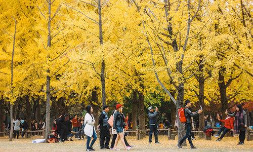 Travel blogger gợi ý 4 điểm đến đẹp không nên bỏ lỡ khi sang thu