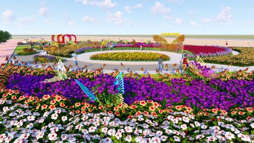 Cánh đồng hoa bướm rộng hơn 3.000 m2 được kỳ vọng là điểm tham quan, thu hút du khách tới check-in, chụp hình.  Ảnh: Công ty C&T.