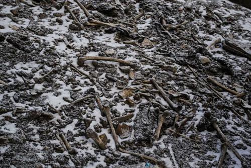 Độ cao của hồ Roopkund lý tưởng để bảo quản những bộ hài cốt. Trong nhiều năm qua, người leo núi tớihồ đã dịch chuyển nhiều bộxương để trưng bày. Ảnh:Himadri Sinha Roy.