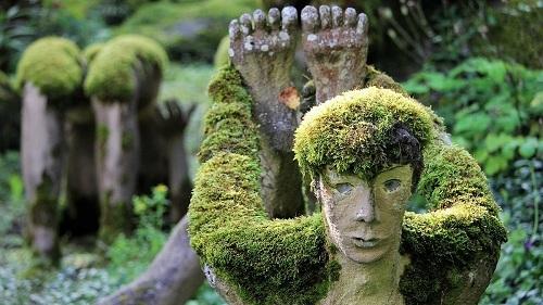 Những bức tượng phủ đầy rêu xanh thu hút hàng chục nghìn du khách mỗi năm. Ảnh: Twitter.