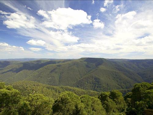 Barrington Tops là một phần của dãy núi Great Dividing tại bang New South Wales. Những cuộc thám hiểm từ trước 1934 đã cho thấy vùng đất này là nơi khó tiếp cận và không có bất kỳ dấu vết gì của con người. Ảnh: Visit NSW.