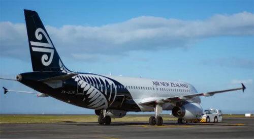 Nguyên nhân cái chết của hành khách vẫn chưa được hãng bay hay cảnh sát tiết lộ. Ảnh: News.