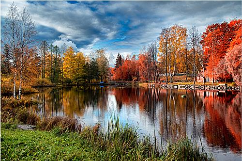 Rừng cây lá đỏ ở Karelia khiến du khách như lạc vào một thế giới khác. Ảnh:Legion Media.