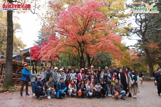 Ưu đãi đến 3 triệu đồng chùm tour nước ngoài mùa lá đỏ