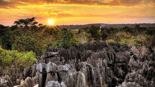 Tổ chức Công viên quốc gia được thành lập năm 1990 để bảo tồn tài nguyên thiên nhiên trong các khu bảo tồn. Ảnh: Natural World Safari.