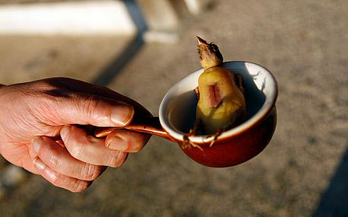 Những con chim họa mi sẽ bị thả vào thùng rượu trước khi nấu chín. Ảnh: MAXPPP.