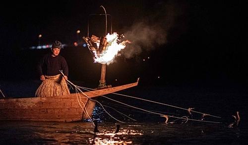 Sugiyama là một trong những ngư dân nuôi chim cốc cuối cùng ở Gifu. Ảnh: Martin Bureau.