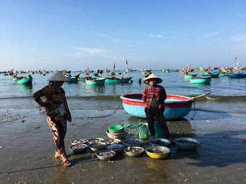 Hải sản được bán theo thau, đồng giá 100 nghìn đồng mỗi thau.