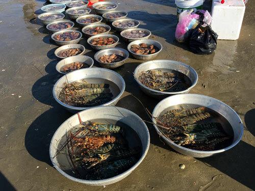 Một số hải sản đắt tiền như tôm hùm, mực, ốc hương được bán theo kg.