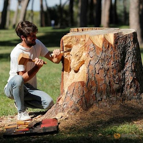 Gandini, nghệ sĩ trẻ bắt đầu chạm khắc cây khoảng 5 năm trước, đang sáng tạo với gốc cây thứ 66 của mình trong công viên Villa Pamphili vào 18/10. Ảnh: Remo Casilli/Reuters.