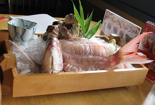 Món Ikuzukuri làm từ cá sống. Ảnh: Wikipedia.