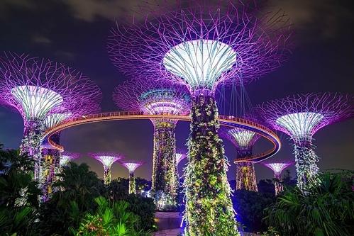 Vườn Garden by the bay ở Singapore. Ảnh: Shutterstock/Zhukova Valentyna.