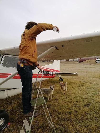 Tom rã băng trên cánh máy bay bằng rượu. Ảnh:David Berger.