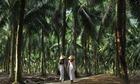 Vẻ đẹp xứ dừa Bến Tre