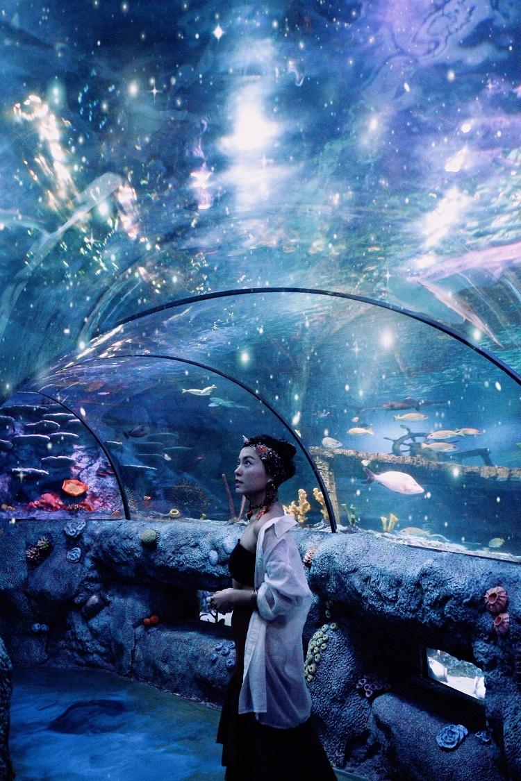 Sealife là thủy cung nằm trong tổ hợp giải trí Legoland, có đường hầm trong suốt mô phỏng đại dương với đa dạng các loài sinh vật biển như sao biển, cá mập hay những loài sứa biển. Hiệu ứng đèn và quang cảnh động giúp nơi này trở thành điểm chụp ảnh đẹp mắt.