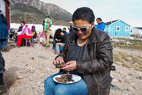 Nhiều người gọi Kiviaq là món ăn đến từ địa ngục. Ảnh: Carsten Egevang.